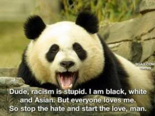 I'm Black and White - just like President Obama.