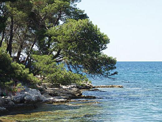 Beach at Golden Bay, Rovinj, Croatia.