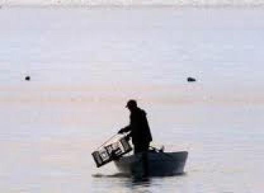 A  lone lobster fisherman.