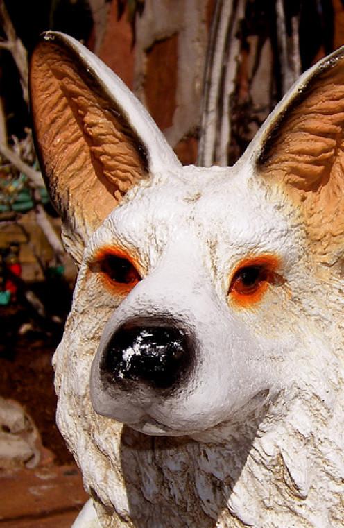 Coyote figurines are a no-no.