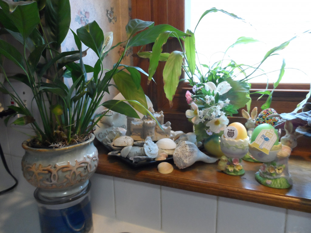 Plants For Kitchen To Decorate It: Kitchen Window Plants And 9 Window Decorating Ideas
