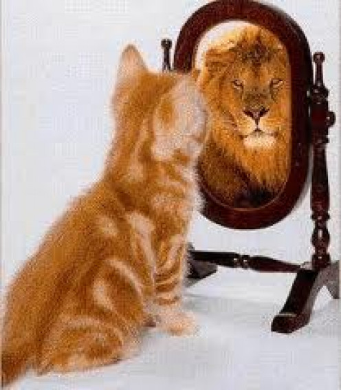 When you look into the mirror - don't talk yourself down, talk yourself up!!