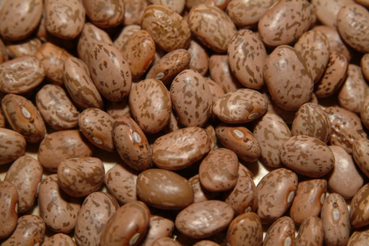 Bean bring many nutritional elements to a healthy superfood diet!