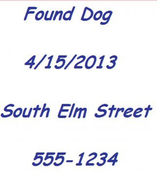 Only include the important information in larger letters that are easy to see from the street when making a found dog poster.