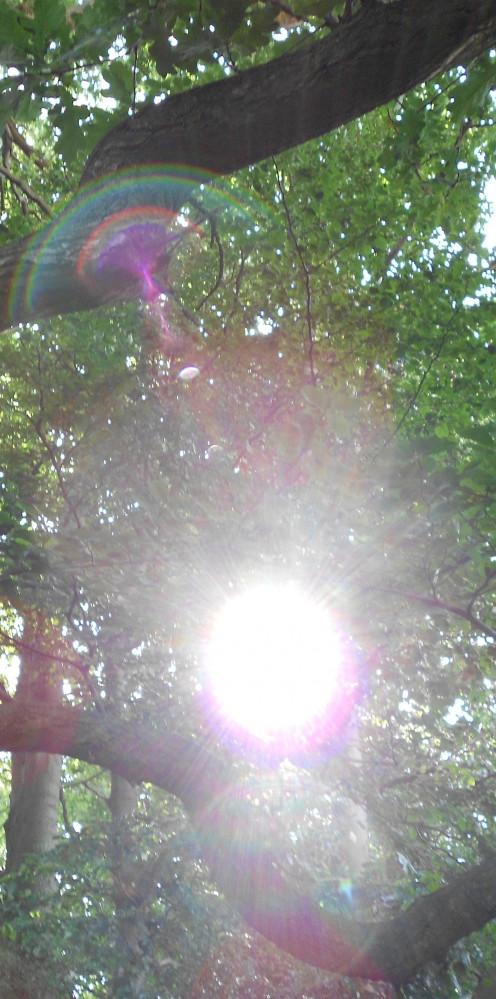 Original photo used as ending slide in video.