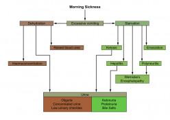 Natural Ayurvedic Home Remedies For Morning Sickness