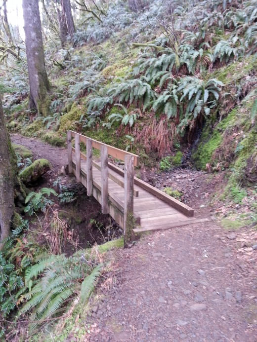Wooden bridge with rails crossing the stream.