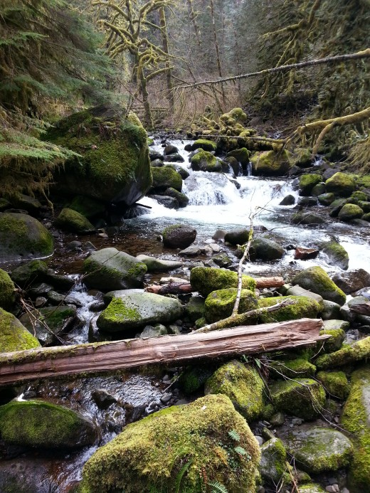 Another view of the river above Triple Falls.