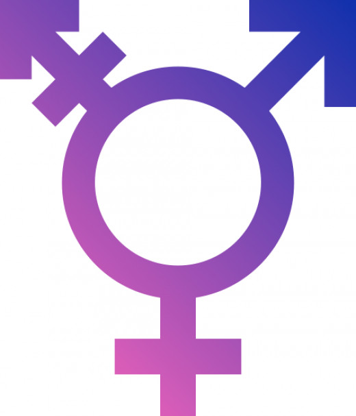 This is the LGBT transgender symbol which is used as a pride symbol for cross-dressers and transgender people.
