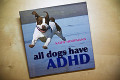 Thousands Lose Jobs Because Of ADHD Epidemic!!