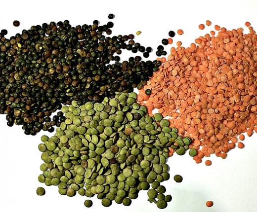 Three common varieties of lentils