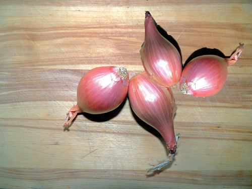 grab your shallots & dice