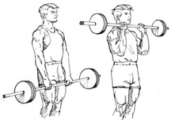 1 Barbell, 1 hour, three times a week