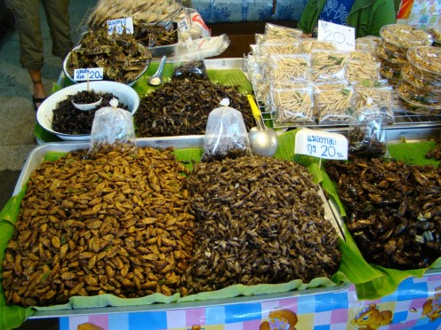 Bugs are food that are sold in the open markets.