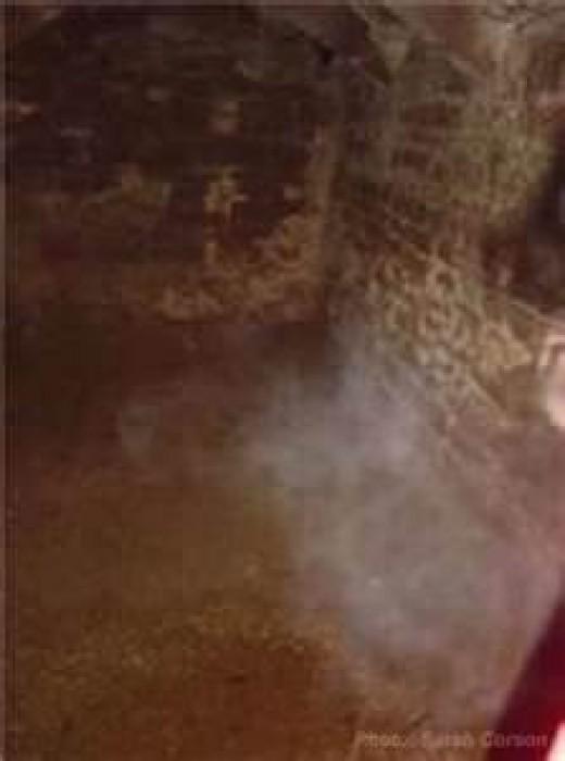 Goodrich Castle dungeon (with strange mist)