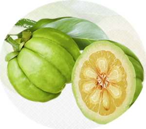 Garcinia is a small pumpkin shaped fruit found in regions of Africa and Indonesia.