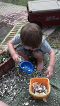 Child at Play ---   Making Root Cake