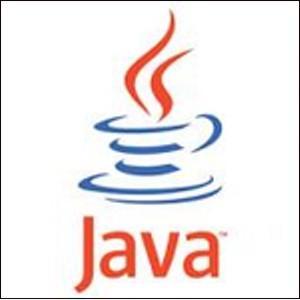 Oracle Java is a necessary software for every computer, thus it is a standard target of cyber criminals who gain advantage of its vulnerabilities.