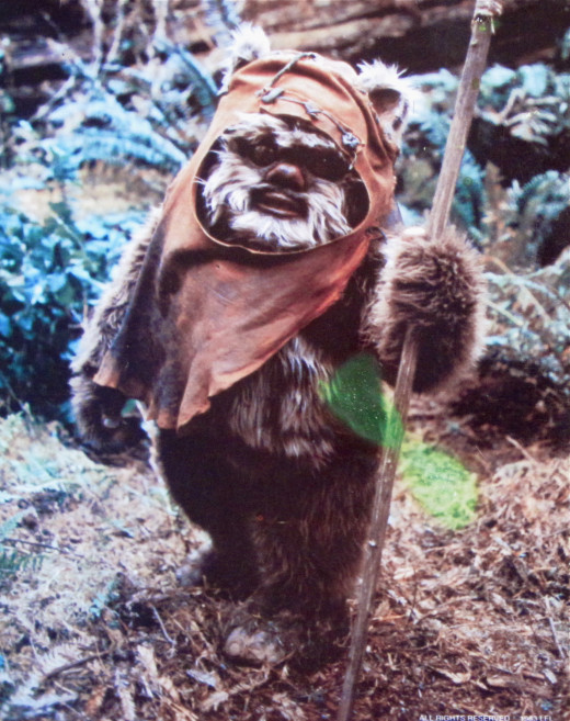 Ewok from Star Wars.