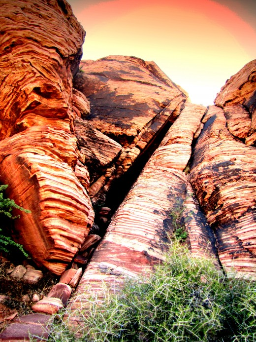 Calico Basin, Red Rock Canyon. About 30 minutes from Las Vegas Blvd.