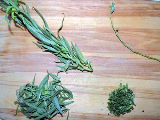 Tarragon-left to right, top to bottom--prep