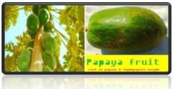 Papaya Benefits: Health and Nutrition
