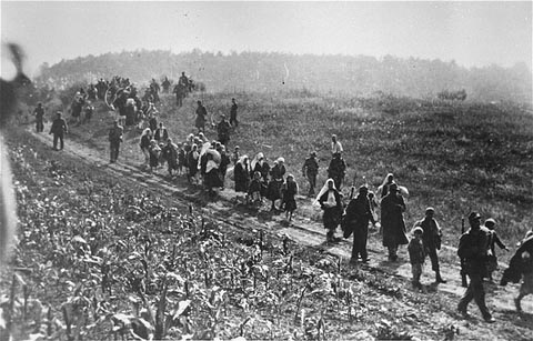 "From the Sabac Internment Camp, September 1941.  German soldiers alongside Ustasa collaborators, lead a column of Serbs to the Sabac internment camp during anti-partisan ""cleansing"" operations.  From the Macva region."