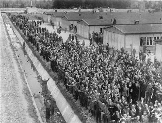 Survivors at Dachau.  April 29, 1945.  Free at last.  These are some of the few lucky ones.