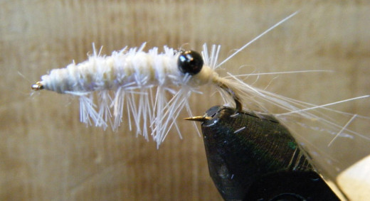 The grass shrimp as a wet fly.