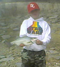 Ohio River White Bass Don't Grow to the Size of Stocked Striped bass and Hybrids But Bigger Ones Like This Let You Know You've Got Something at the End of the Line.