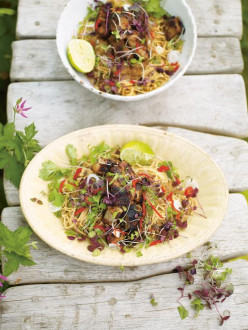 Hot & Sour Rhubarb with Crispy Pork and Noodles