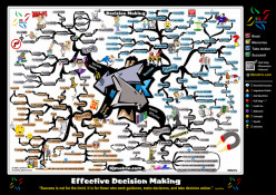 Effective Decision-Making in Analyzing Educational Organizations