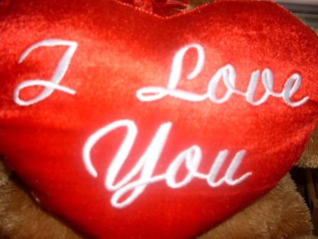 """satin pillow with words, """"I love you"""""""