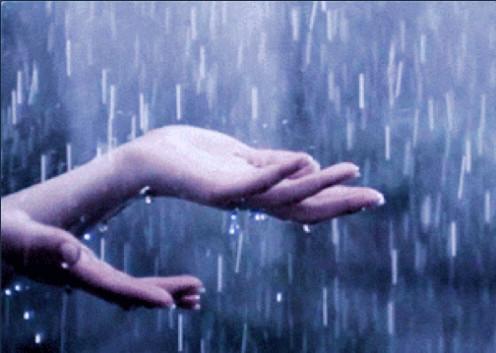 The sound of the rain needs no translation~