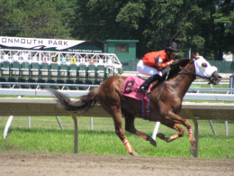 #8 Horse Going For The Win at Monmouth Park in New Jersey.