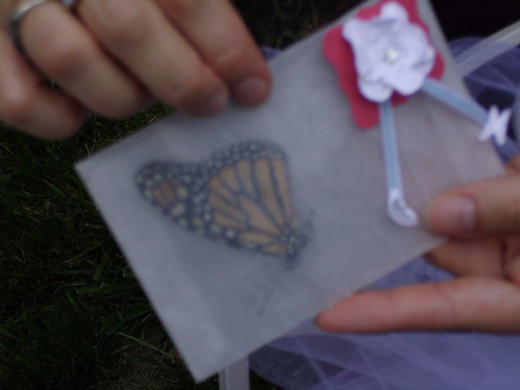 Butterflies can occupy an envelop for each guest to release. Make a decoration ahead of time to attach quickly when unpacking the purchased butterflies from their cool packing.