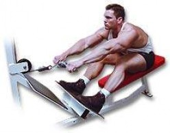Seated Cable Row Endurance Workout