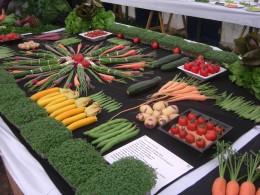 My vegetables