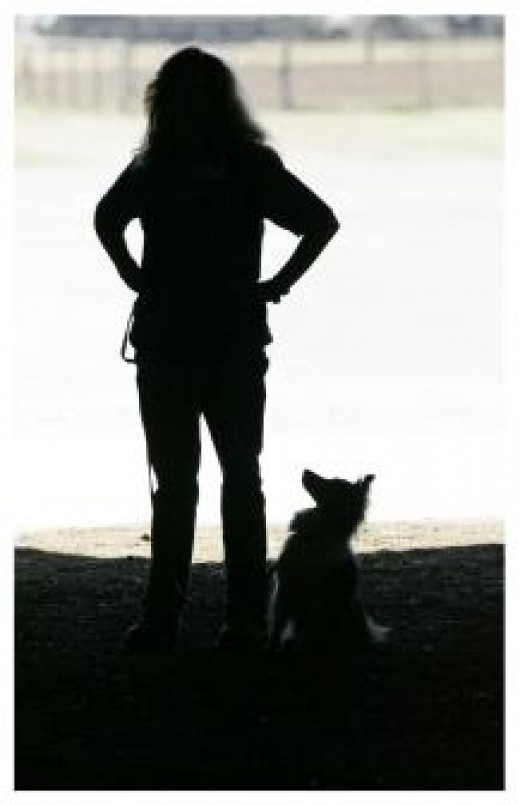 The author and her sheltie, Aslan, in silhouette at the start gate just before their first championship run.