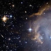 Ceres Schwarz profile image