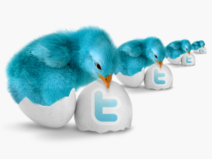 Twitter logoed eggs with blue chicks hatching