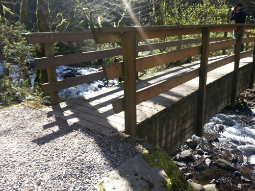 Close up of the wood bridge with rails and the sunshine.