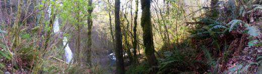 Looking at the Bridal Veil Falls scenery.