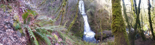 The woods and Bridal Veil Falls.