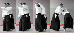 "Kokyu Nage in Aikido - ""20-year technique"""