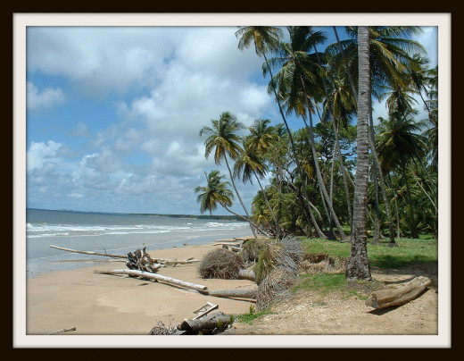 Mayaro Beach in Trinidad.