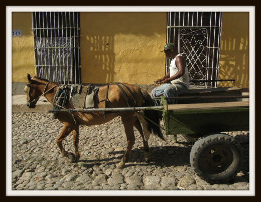 A horse and wagon in Trinidad