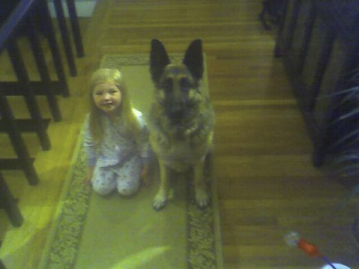 German Shepherd with little girl