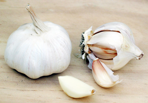 Garlic bulb showing the individual cloves inside.