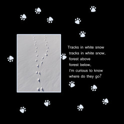 Tracks in White Snow, Where do they go?